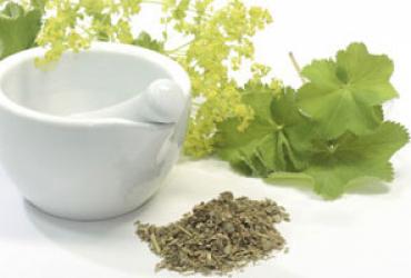 Urtinkturen & Pflanzenextrakte